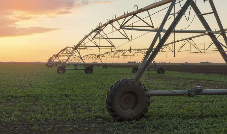 A center pivot stands ready to water a green field of young soybeans as the sun begins to set