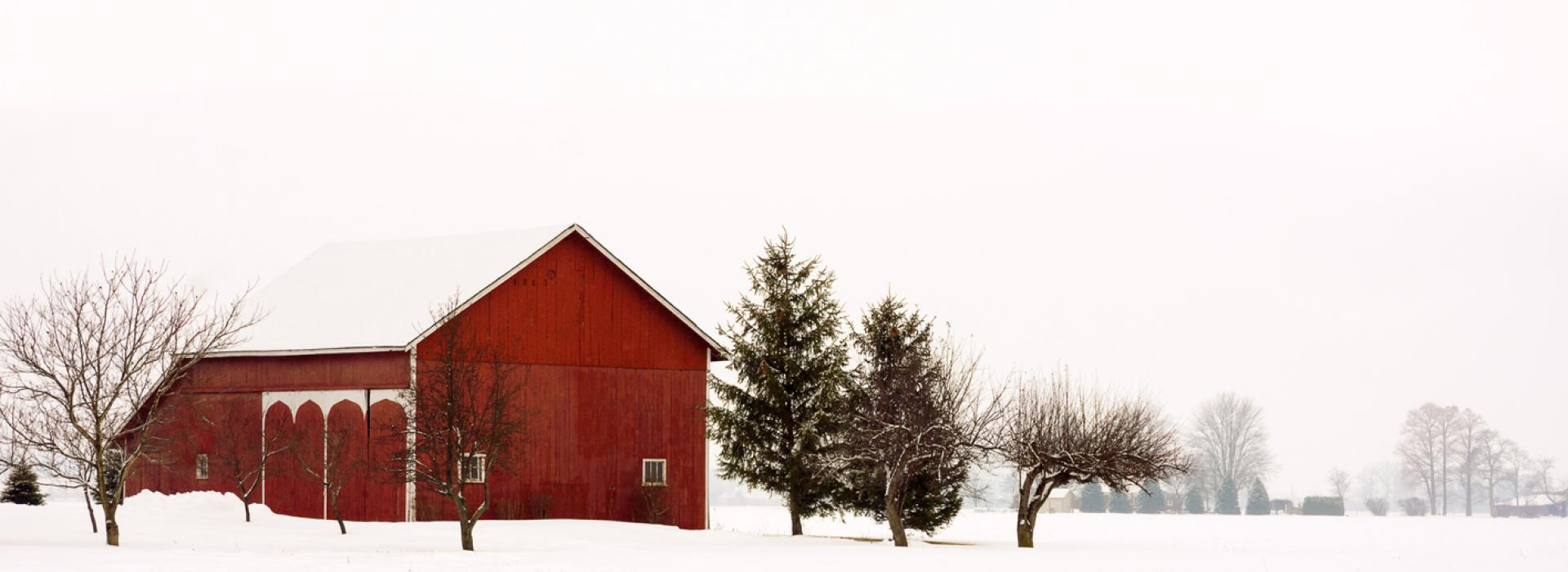 A red barn makes a peaceful landmark against green pines and newly fallen snow